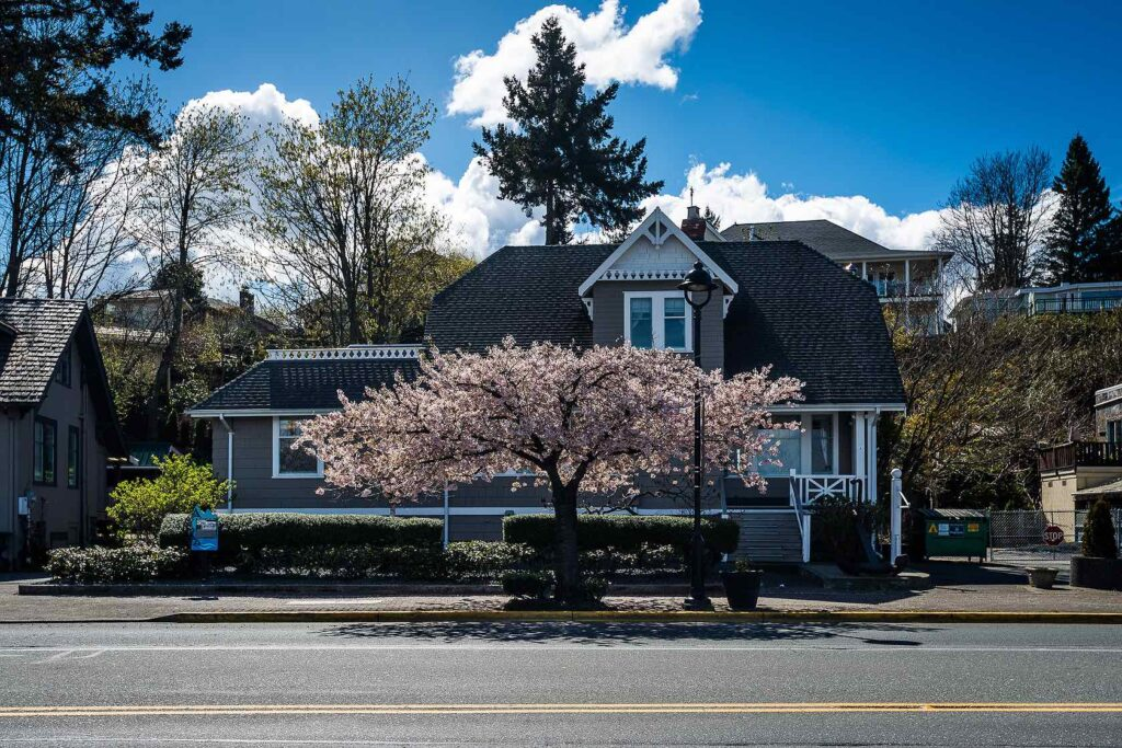 Search Campbell River commercial properties for sale including local businesses and investment properties